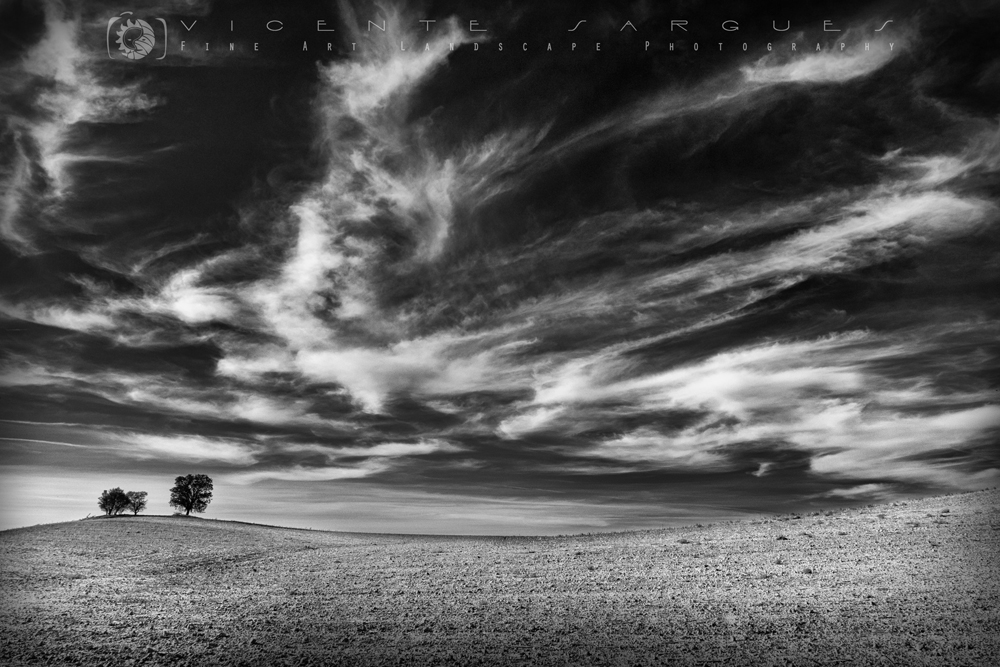 Encinas y nubes