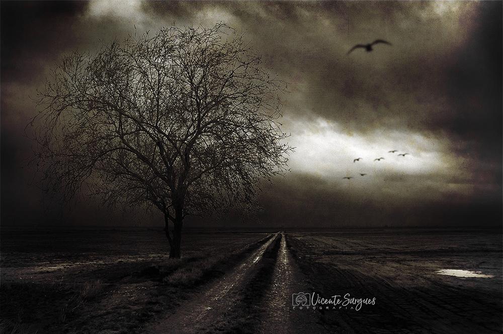 Camino dramático